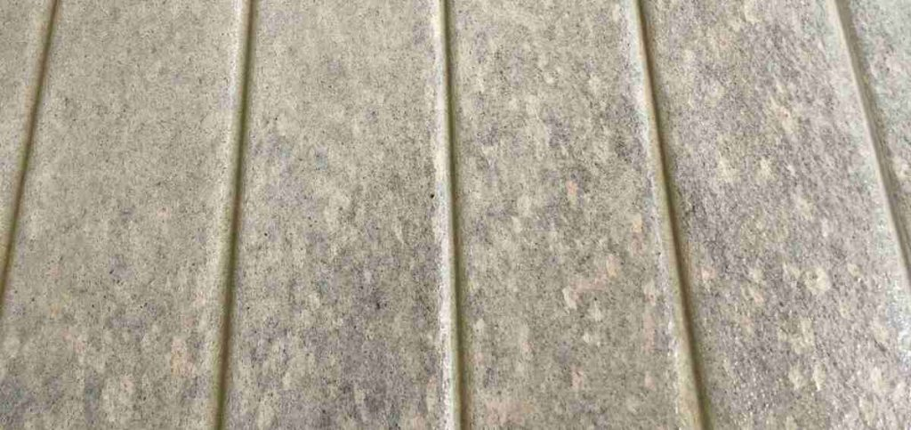 how to remove mould from your decking