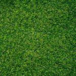 full look grass