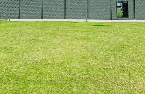 artificial grass is a better option to natural grass